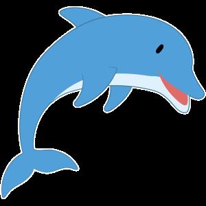 Sea Animal PNGs (Part 3)
