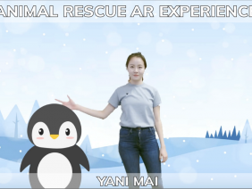 Animal Rescue Project Tutorial Series