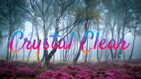 navya_crystalclear_v2