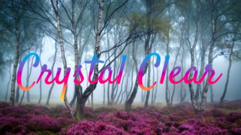 navya_crystalclear