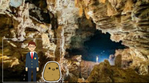 venus potato project_2